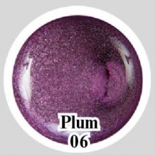 Магнитный гель Plum 06